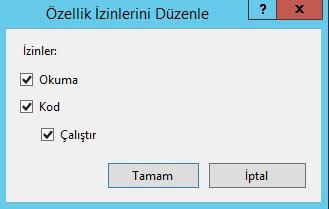 IIS özellik izinleri düzenleme