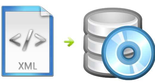 logo Xml Veri Aktarımı