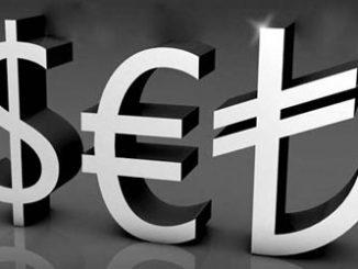 logo dövizli bakiye takibi